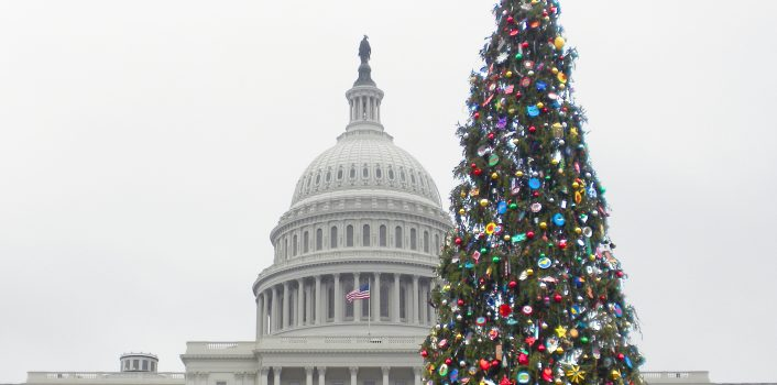 Permit Wizard helps with oversize permits for the Capitol Christmas Tree